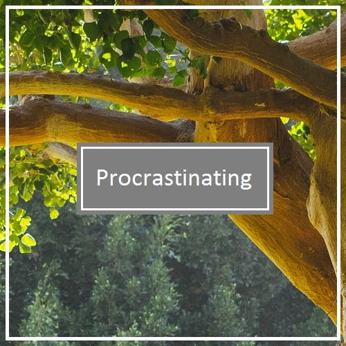 Death to Procrastination