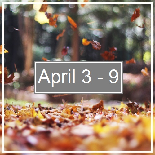 Week In Review; April9th