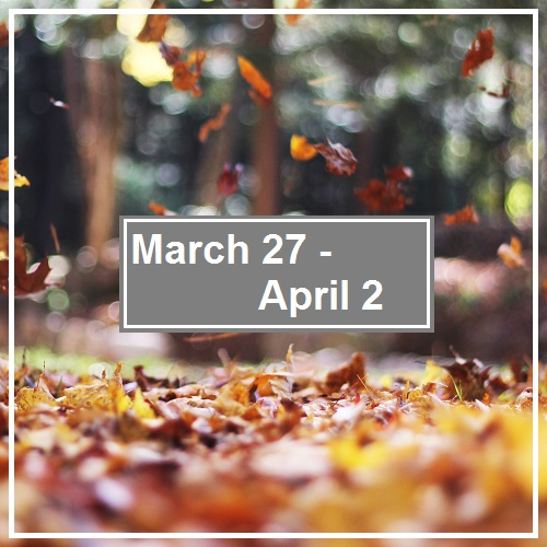 Week In Review; April2nd
